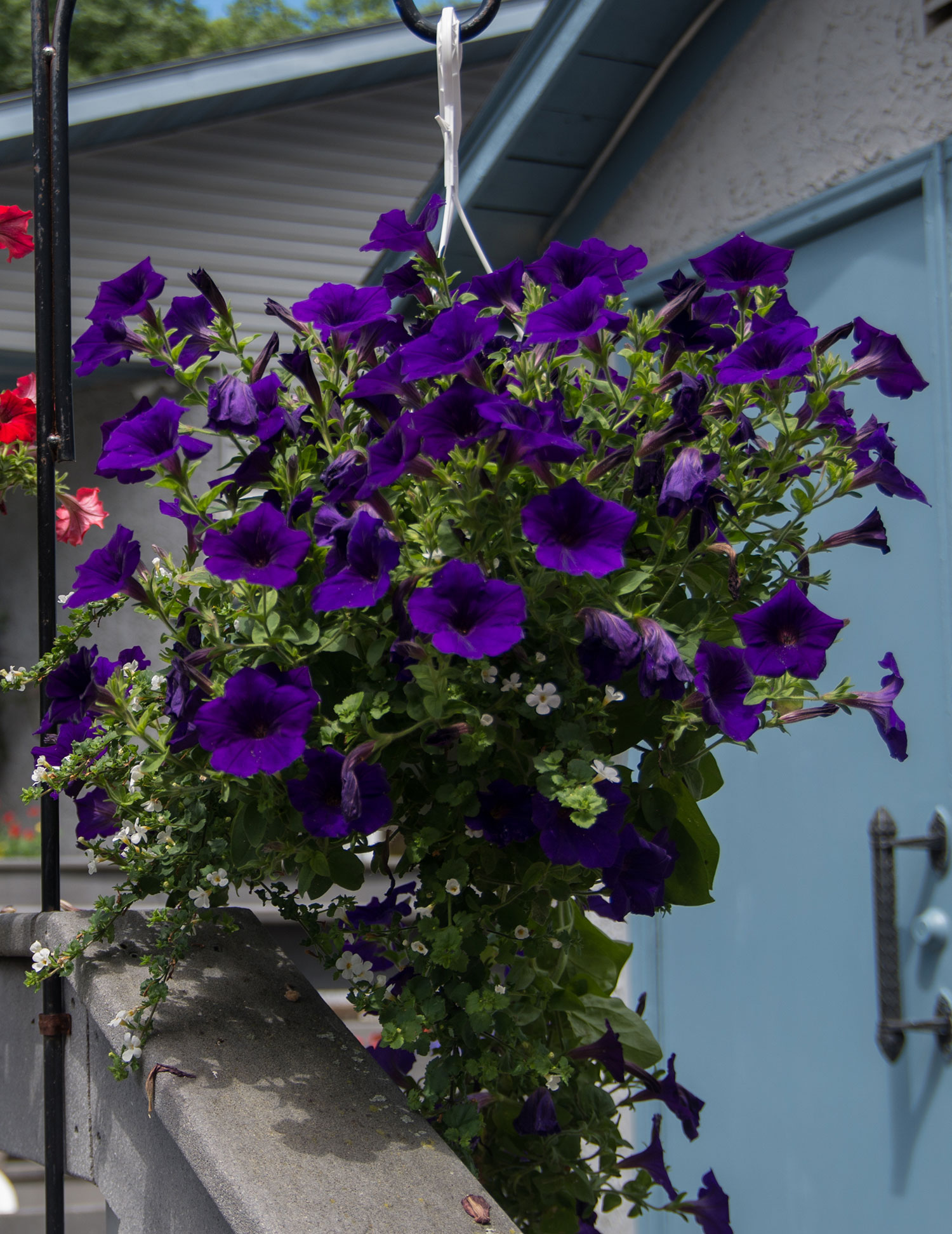 Flowers at Castle Hill Supper Club - restaurant and banquet facility